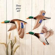 Duck Kitchen Decor Amazon