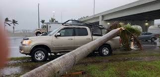 100 Truck Driving Palm Trees Fall On Pickup Truck Driving By At University And I75