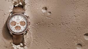 Los Olivos Mexican Patio Scottsdale Az 85251 by Omega Watches Swiss Luxury Watch Manufacturer