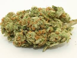 5 The Most Famous Strains Cannabis