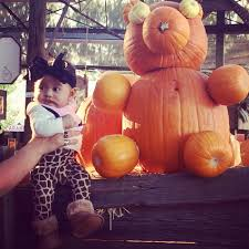 Redlands Fl Pumpkin Patch by Corn Maze Code Don U0027t Try Saving This They Change The Numbers