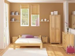 living room warm paint colors house decor picture