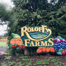 Roloffs Pumpkin Patch In Hillsboro Or by Hillsboro Or Hotel Hillsboro Budget Inn