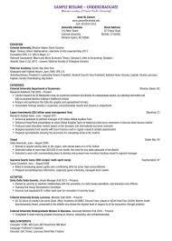 Undergraduate Student Resume Examples Of Resumes Template
