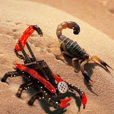 Do Tarantulas Shed Their Legs by Real Vs Robotic 2 More Animals Behind The Toys Hexhub