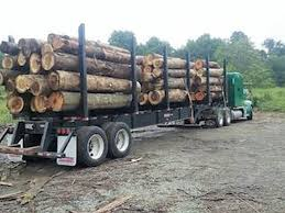 Reward Offered For Info On Stolen Log Truck, Trailer Logging Trucks For Sale On Cmialucktradercom Peterbilt Long Log Truck Custom Toys And 388 Log Truck For Farming Simulator 2015 Used 2004 Peterbilt 379 Ext Hood For Sale 1951 1984 Tractor National Museum Of American History 281 Wikipedia Truck Trailer Transport Express Freight Logistic Diesel Mack New 2018 367 Near Edmton Ab 2005 378 Tract Auctions Online Proxibid 1992 Western Star 4964f 938357 Miles 2014 389 Icon Of The Highway Photo Image Gallery Trucking Spotlight Expresstrucktax Blog
