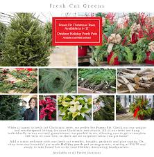 Fresh Cut Greens Petitti Garden Center