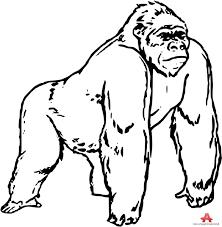 gorilla clipart black and white 6
