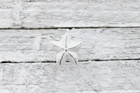 White Starfish Cabinet Knobs by Drawer Pull Knobs Dresser Pull Cabinet Pulls Shabby Chic White