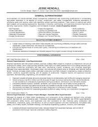 Resume Objective Examples General Statement Samples