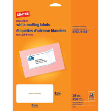 Staples White Address Labels, For Use With Inkjet/Laser Printers, 4