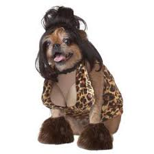 Halloween Shop Staten Island by Halloween Costume Contests For Pets Slated In All 5 Boros Ny