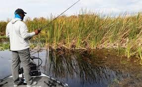 Sink Florida Sink Bass Tab by Top Five Florida Bass Lakes Florida Sportsman