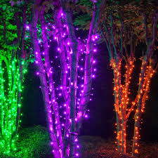 Halloween Do It Yourself Wintergreen Lighting LED Purple