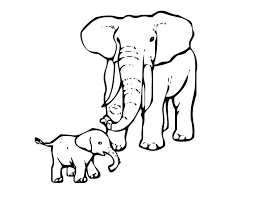 Animal Coloring Elephant Page 2 Line Art