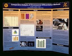 Tri Fold Mounted Scientific Posters For Poster Sessions Regarding Template