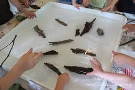 Materials Sink Or Float by Sink Or Float An Exploration With Nature Teach Preschool