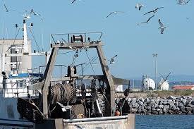 meteo a port la nouvelle port la nouvelle tourisme attractions et à voir aux alentours de