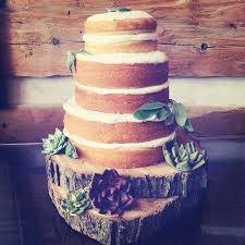 Rustic Wedding Cake Unfrosted Naked Layers With Fondant Succulents And Real Sage Accents