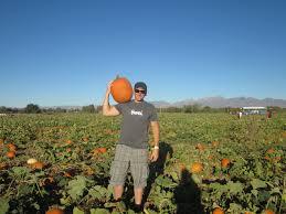 El Paso Pumpkin Patch 2014 by Date Nights