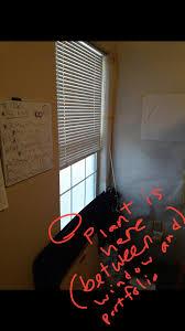will artificial light light from a light bulb affect harm my