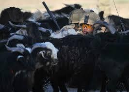 Como arrancan las guerras?-http://t0.gstatic.com/images?q=tbn:ANd9GcRd3XiIOgZiqI9n4g8J6mtrqsVtNuIkBvawRsutwl6NH3dlFmLU