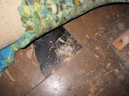 asbestos floor tiles under carpet the dangers of asbestos floor