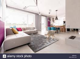 geräumiges offen geschnittenes modernes wohnzimmer