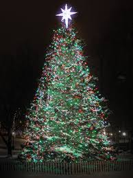 Christmas Tree Stand Amazon by The Boston Common Christmas Tree By The Numbers Boston Magazine