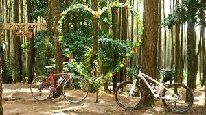 Hutan Pinus Mangunan Archives