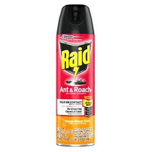Raid 77533 Ant & Roach Killer, Orange Scent, 17.5-Oz. Aerosol - Quantity 1