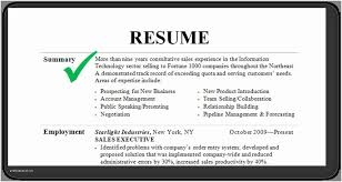 Experience Summary In Resume Examples Of Brief Writing