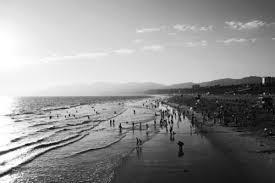 Santa Monica Beach Art