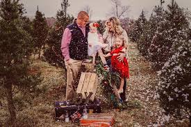 Shells Christmas Tree Farm Tuscumbia Al by Hmp Couture Imagery Home Facebook