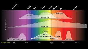 Induction Lamps Vs Led by Grow Lights How Tesla U0027s Efdl Works Youtube
