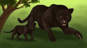 How To Draw A Black Panther Wild Cats Coloring Pages Drawing Animals On