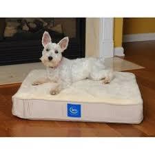 ultra plush snuggle dog bed pink beautiful designer dog bed 120