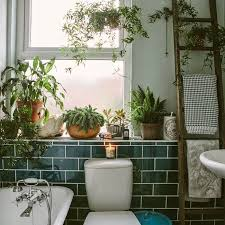 Plants Bathroom Blue White And Green