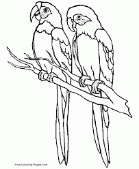Birds Printable Coloring Pages 17 Bird 745