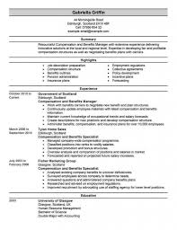 Human Resources Director Resume Sample Manager Summary ... 10 White Paper Executive Summary Example Proposal Letter Expert Witness Report Template And Phd Resume With Project Management Nih Consultant For A Senior Manager Part 5 Free Sample Resume Administrative Assistant 008 Sample Qualification Valid Ideas Great Of Foroject Reportofessional 028 Marketing Plan Business Jameswbybaritone Project Executive Summary Example Samples 8 Amazing Finance Examples Livecareer Assistant Complete Guide 20
