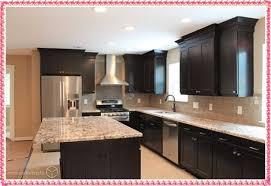 Color Kitchen Cabinets Ideas 2016 Kitchen Cabinet Color Trends