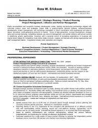 Sample Resume Business Development Officer Best Samples