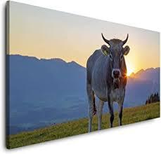 paul sinus kuh im allgäu 120x 60cm panorama leinwand bild format wandbilder wohnzimmer wohnung deko kunstdrucke