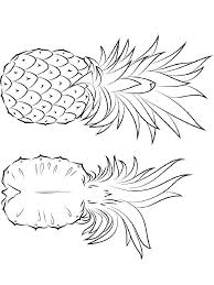 Pineapple Coloring Page Pages And Print