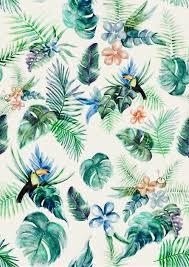 tropical tumblr Поиск в Google FM Pinterest