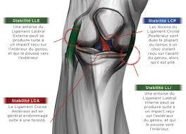 douleur interieur genou course a pied zamst genou