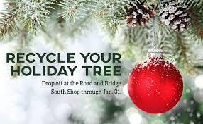 Christmas Tree Permits Colorado Buffalo Creek by Jefferson County Co Official Website