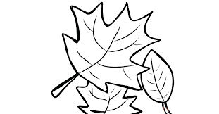 Leaf Printable Coloring Pages Sheets For Fall Simple