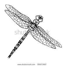 Dragonfly Coloring Page Hand Drawn Cute Pages