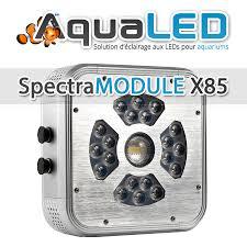 eclairage led pour aquarium eau de mer eclairage led aquarium récifal spectramodule x85